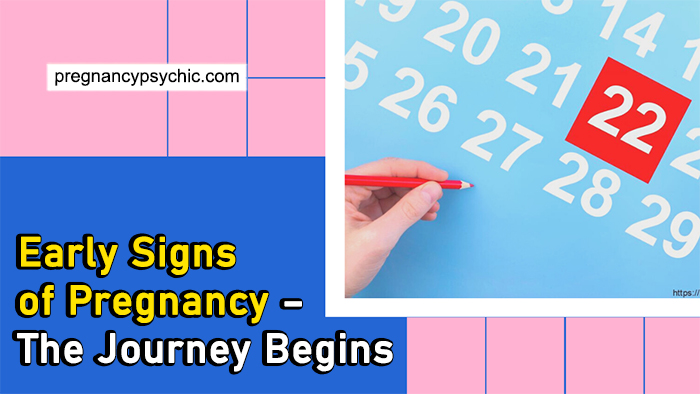 Early Signs of Pregnancy – The Journey Begins
